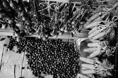 Colheita das nozes, do milho e da cebola Imagem de Stock Royalty Free
