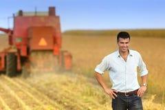 Colheita do feijão de soja Imagens de Stock Royalty Free