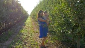 A colheita do fruto, mum feliz com a menina da criança nas mãos colhe no jardim da maçã entre fileiras das árvores na luz brilhan vídeos de arquivo