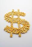 Colheita do milho do dinheiro II Fotografia de Stock