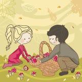 Colheita do outono ilustração do vetor