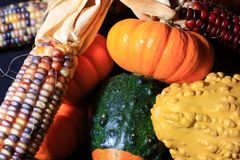 Autumn Harvest fotografia de stock royalty free