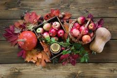 Colheita do outono, abóbora, maçãs na cesta, folhas de outono coloridas na placa de madeira Ainda vida, estilo do vintage Vista s Foto de Stock