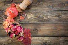 Colheita do outono, abóbora, maçãs na cesta, folhas de outono coloridas na placa de madeira Queda, espaço da cópia Vista superior Foto de Stock Royalty Free