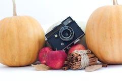 Colheita do outono com câmera velha: abóboras maçã e canela no fundo branco Conceito da ação de graças imagens de stock royalty free