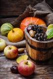 Colheita do outono das maçãs e das abóboras Imagens de Stock Royalty Free