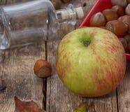 Colheita do outono de Apple Fotografia de Stock