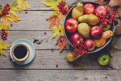 Colheita do outono e fundo do cartão da ação de graças Imagem de Stock Royalty Free