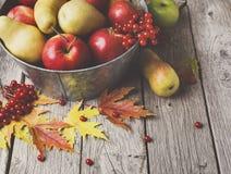 Colheita do outono e fundo do cartão da ação de graças Foto de Stock Royalty Free