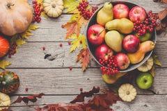 Colheita do outono e fundo do cartão da ação de graças Imagens de Stock Royalty Free