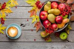 Colheita do outono e fundo do cartão da ação de graças Imagens de Stock