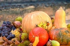 Colheita do outono - frutas e legumes orgânicas sazonais Imagens de Stock