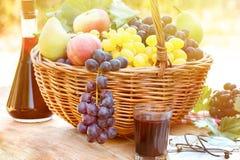 Colheita do outono na cesta de vime e no vinho tinto Imagens de Stock