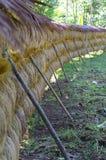 A colheita do vintage laundy de povos locais foto de stock royalty free