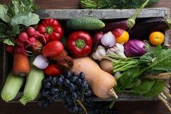 Colheita dos vegetarianos na opinião superior da caixa de madeira Fotografia de Stock Royalty Free