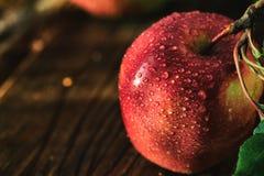 Colheita fresca das maçãs Tema da natureza com as uvas vermelhas no fundo de madeira Fotografia de Stock