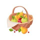 Colheita fresca do fruto do jardim na cesta de vime, na exploração agrícola e em cultivar do piquenique ilustração relacionada no Foto de Stock Royalty Free
