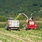 Colheita - a maquinaria agricultural colhe o milho Imagens de Stock Royalty Free