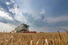 Colheita mecanizada um campo de trigo Liga que trabalha o campo imagem de stock royalty free