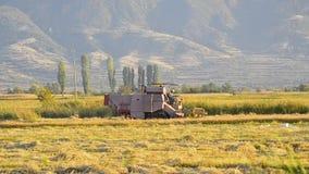 Colheita mecanizada um campo no outono filme
