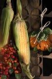 Colheita, milho e bagas do outono Foto de Stock Royalty Free