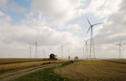 Colheita no wheatfield Imagens de Stock