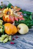 Colheita rica de várias frutas e legumes Imagens de Stock Royalty Free