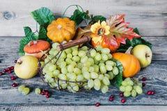 Colheita rica de várias frutas e legumes Foto de Stock Royalty Free