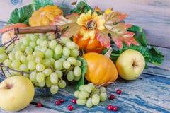 Colheita rica de várias frutas e legumes Fotografia de Stock Royalty Free