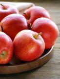 Colheita vermelha madura do outono das maçãs Fotos de Stock