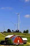 Colheitas do milho e do vento da exploração agrícola Foto de Stock Royalty Free