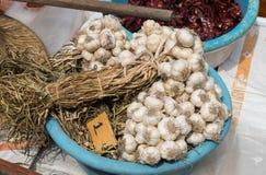 Colhendo alho da exploração agrícola para introduzir no mercado Imagens de Stock