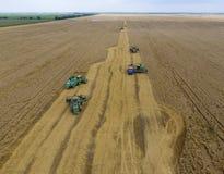 Colhendo a ceifeira do trigo Grão agrícola da colheita das máquinas Fotos de Stock