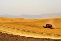 Colhendo colheitas Fotografia de Stock Royalty Free