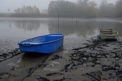 Colhendo a lagoa Fotografia de Stock