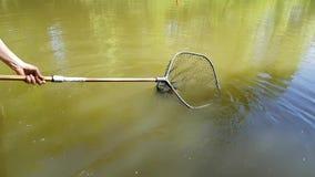 Colhendo a lagoa de peixes Foto de Stock Royalty Free