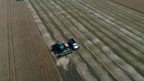 Colhendo o campo de trigo com maquinaria agrícola Fotografia aérea com um zangão Imagens de Stock