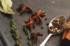 Colher com pimenta e especiarias ao redor na tabela velha escura Fotos de Stock