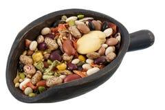 Colher da mistura do feijão e a vegetal de sopa Fotos de Stock