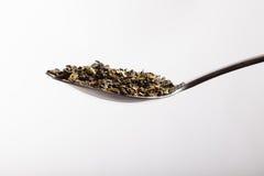 Colher de chá de ervas fotografia de stock