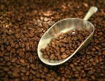 Colher de feijões de café Foto de Stock Royalty Free