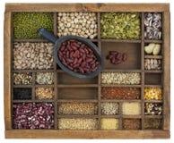 Colher de feijões-roxos, variedade de grão e sementes Foto de Stock Royalty Free