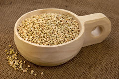 Colher de groats de trigo mourisco Foto de Stock