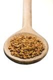 Colher de madeira com sementes de feno-grego Imagens de Stock Royalty Free