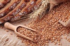 Colher de madeira com trigo inteiro Fotografia de Stock
