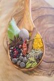 Colher de madeira com a variedade das especiarias Imagens de Stock
