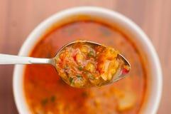 Colher de sopa Fotografia de Stock Royalty Free