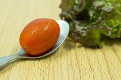 Colher do aço do tomate Imagem de Stock