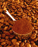Colher do café em grões de um fundo Fotos de Stock