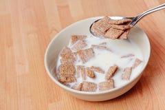 Colher do cereal Fotografia de Stock Royalty Free